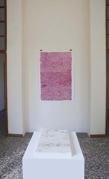 Maria-Morganti-giardini-squisiti-con-massimo-kaufmann-Novate Milanese, Milano-2014-2014